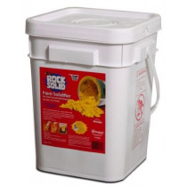 XSORB® Rock Solid Paint Solidifier, 4 Gal Pail w/Scoop